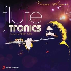 flutetronics poster